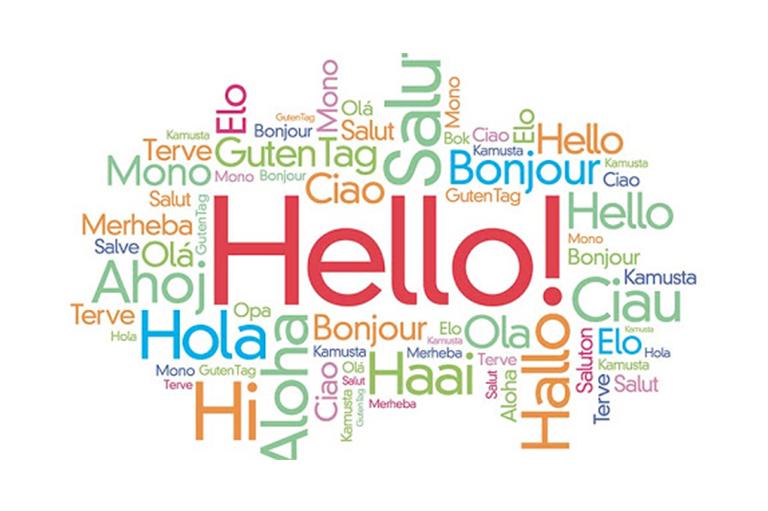 Dil Eğitimi